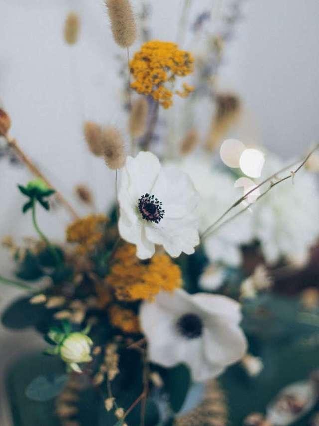 L'anémone couronnée, bouquet et composition de janvier