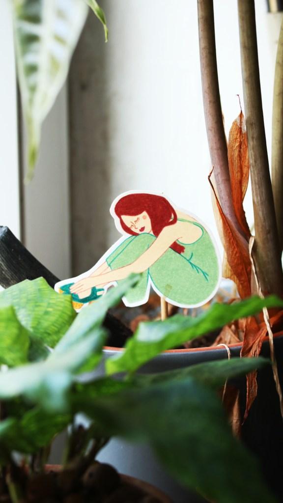 conseil jardinage débutant plante d'intérieur, urban jungle : calathea network | Mon petit balcon