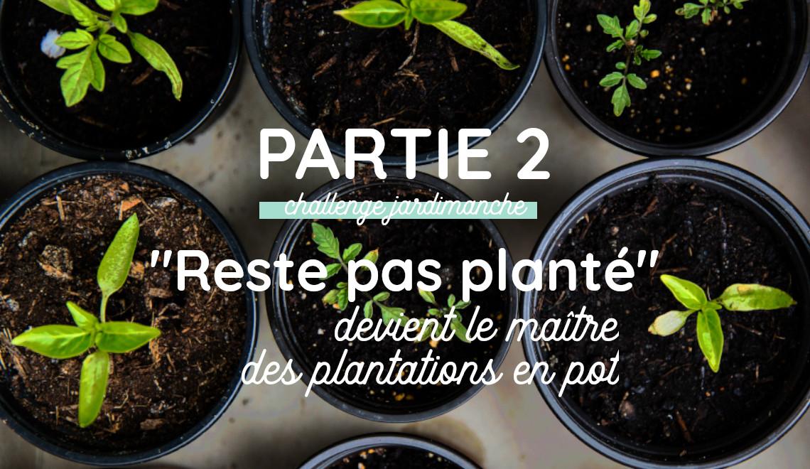 comment planter et repiquer des plantes potagères en pot sur balcon