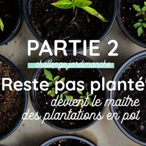 Jardimanche #2 : maîtriser repiquage et plantation en pot sur balcon