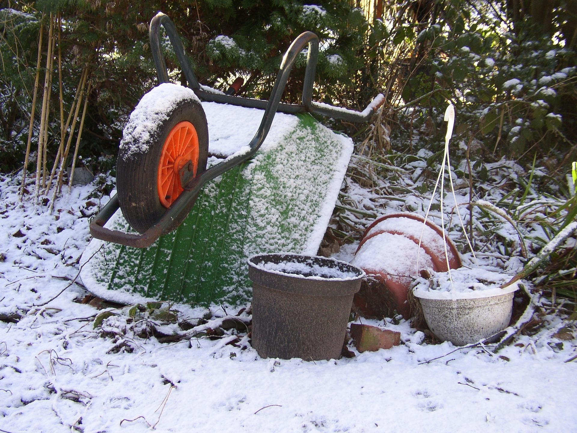 10 conseils pour protéger ses plantes du froid en hiver