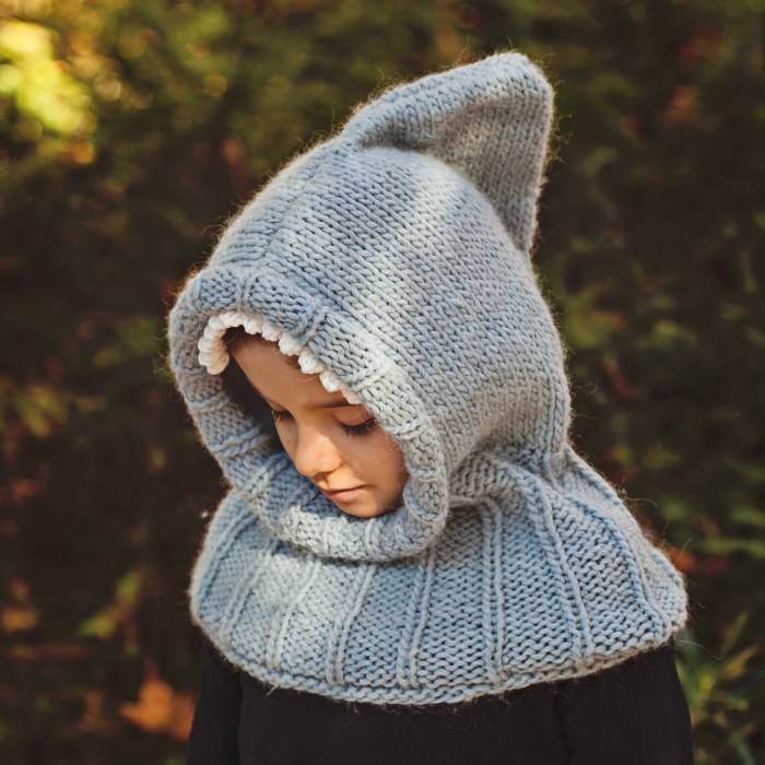 Mon Petit Violon Knits - Shark Hooded Cowl
