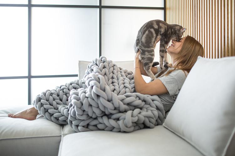ohhio blanket cat