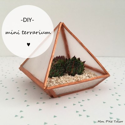 Comment réaliser un mini terrarium en plastique fou
