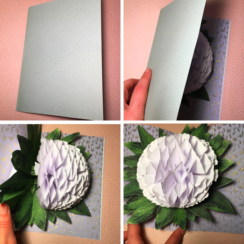 Diy Carte Pop Up Pivoine Mon P Tit Tresor