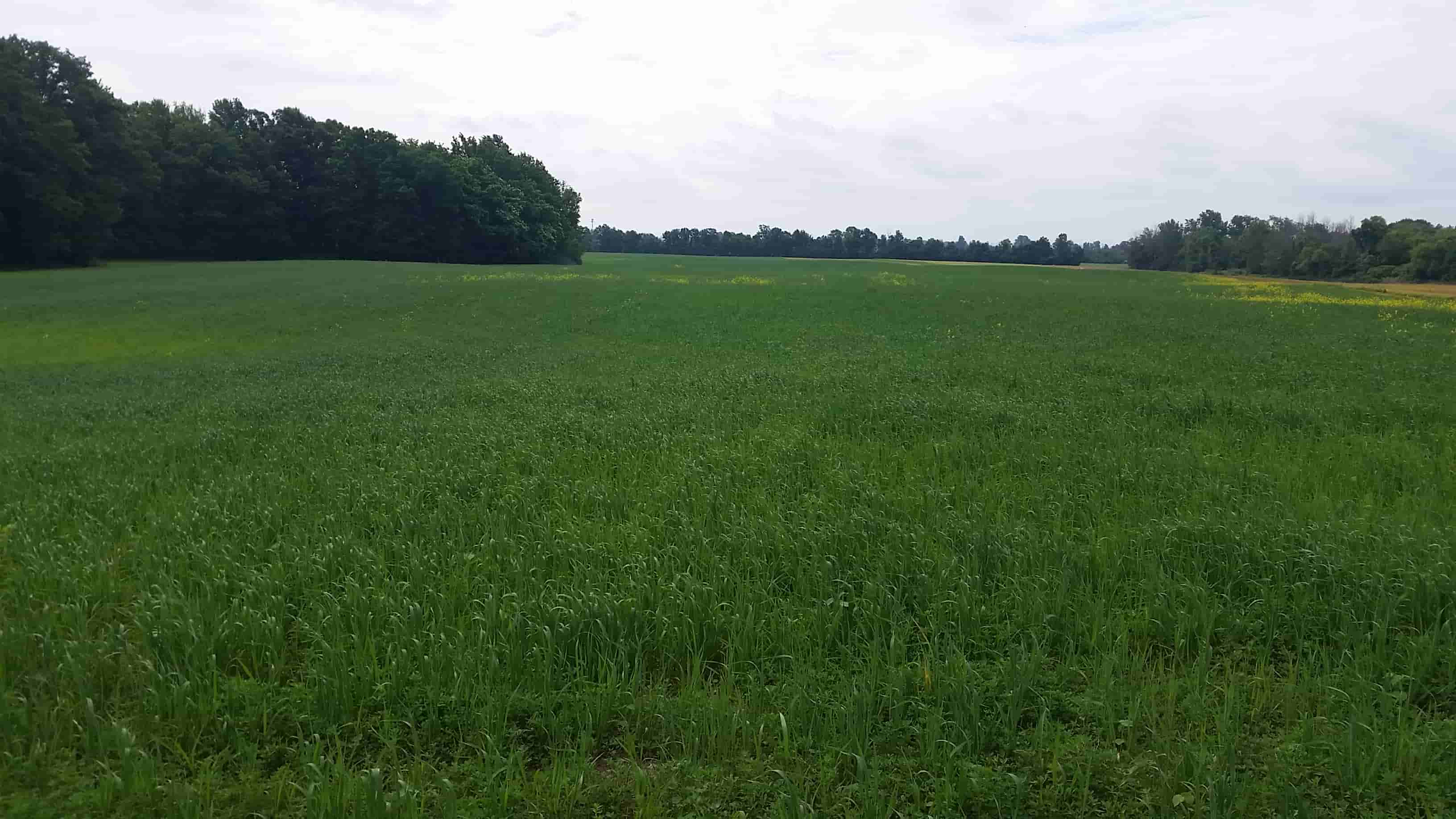 Climate Resilient Farming Monroe County Soil Amp Water