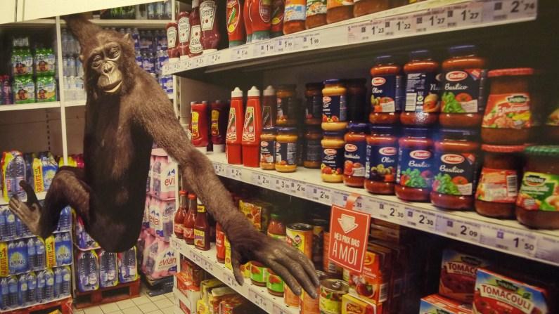 """Animarché """"Chimpanzé """" par Clarisse Rebotier ©Monsieur Bénédict"""