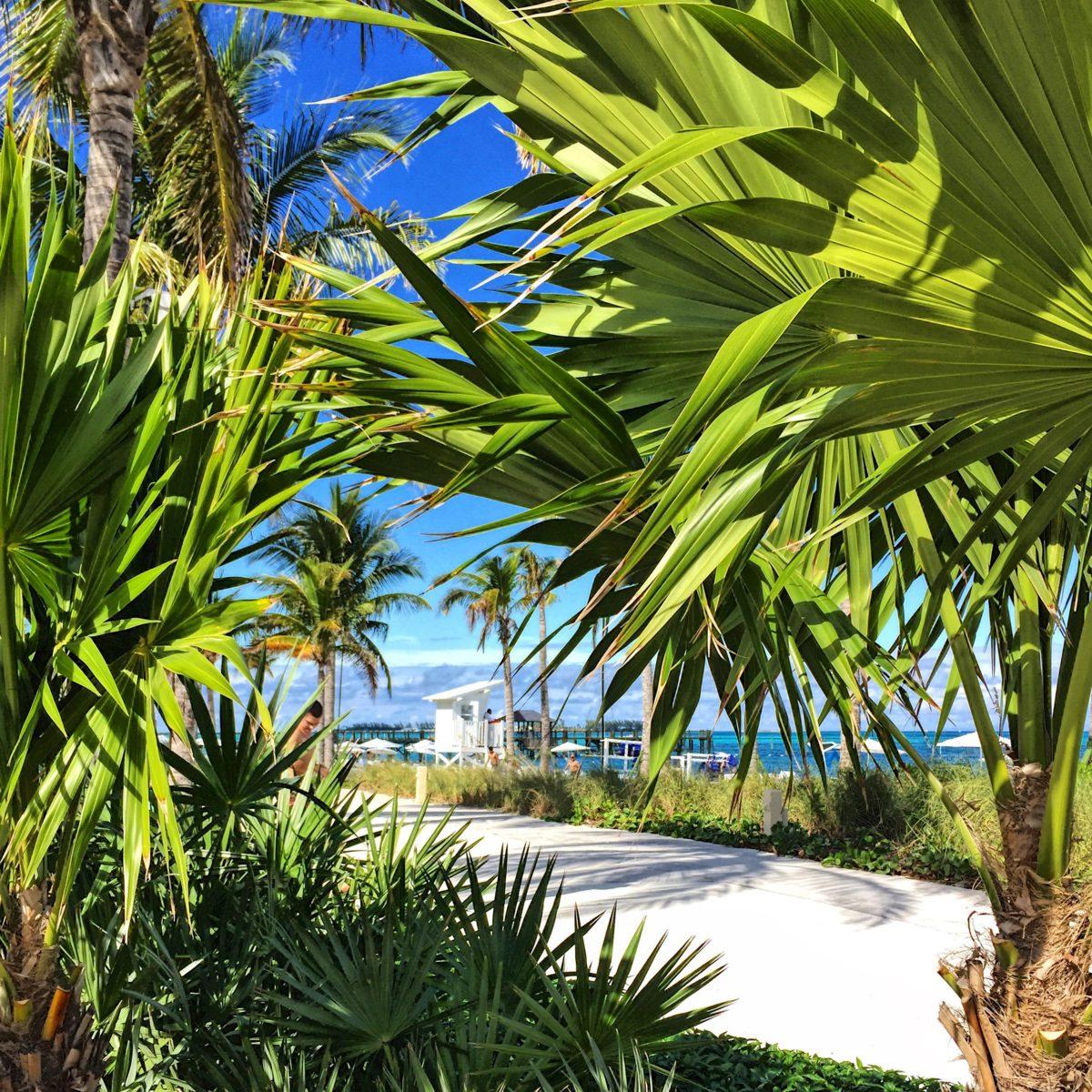 bahamas-voyage-séjour-rêve-eau-nassau-sandyport-airbnb-lestendancesdelilou-boris deltell-sorryformyfrench-magazine-monsieurmada.me-travel-vacances-caraibes-globe trotter-paradise-island-resort-Baha Mar