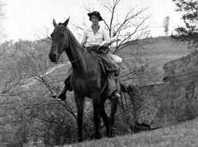 HorsebackLibrarian