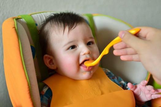 primera verdura bebe