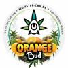 Orange Bud Label