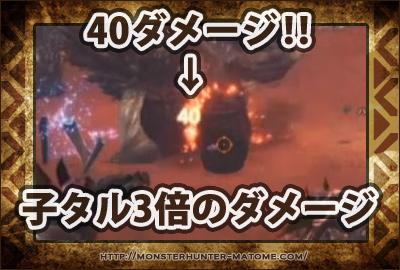 子タル爆弾 モンスターハンター