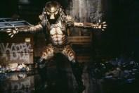 Predator2set2