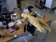 The Mandrake puppet.