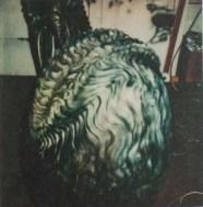 Giger's original egg.