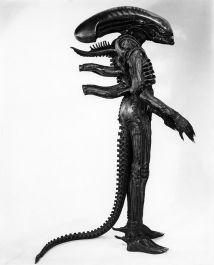 Aliensuito4