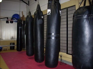 martial arts kicking bag