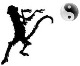 monkey boxing martial art