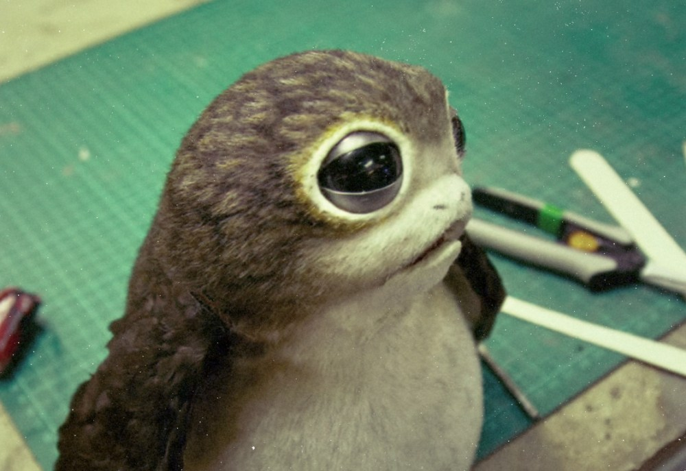 penguin last jedi creature revelated hot luke fallen kingdom