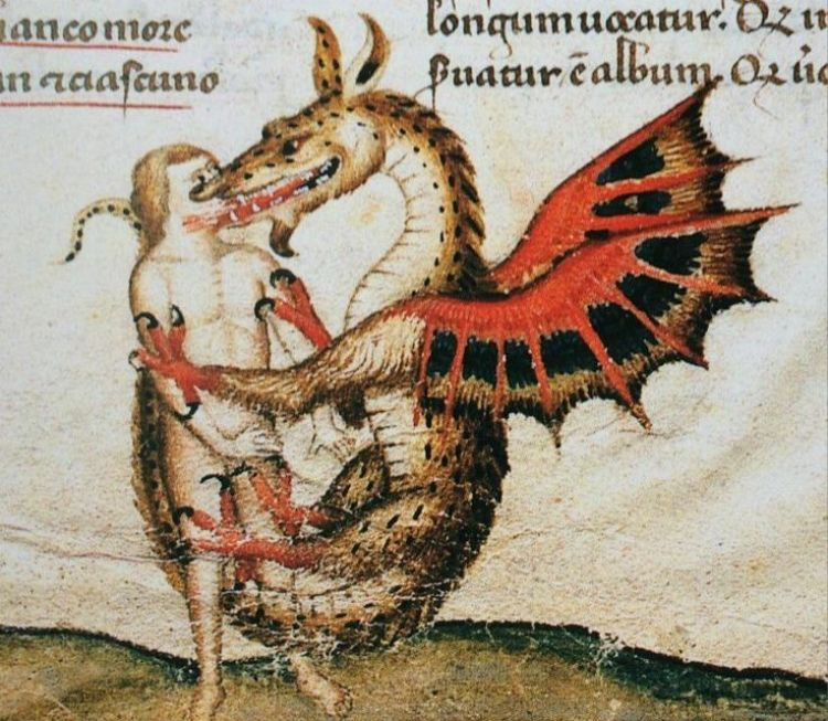 3af2970cffb13389f0ec8ec847c57734--dragon-kiss-medieval-life