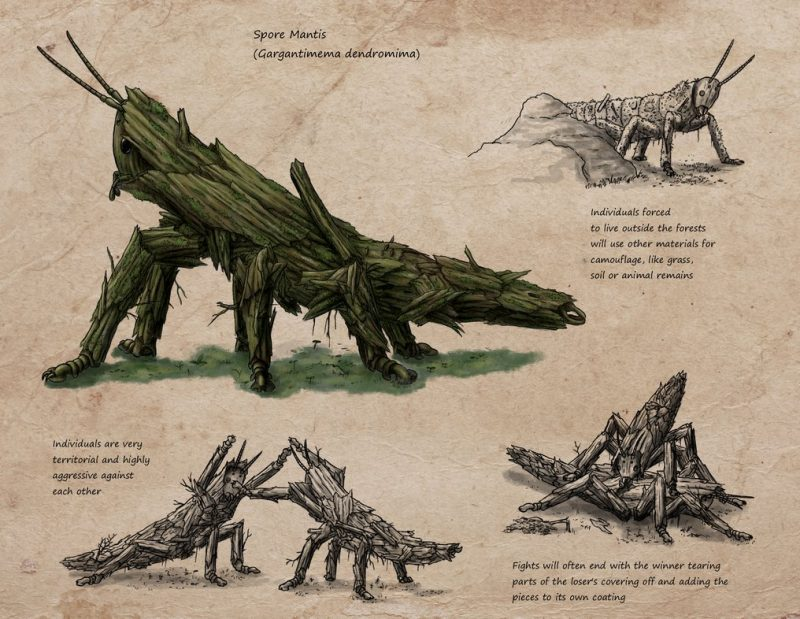 Spore Mantis anatomia