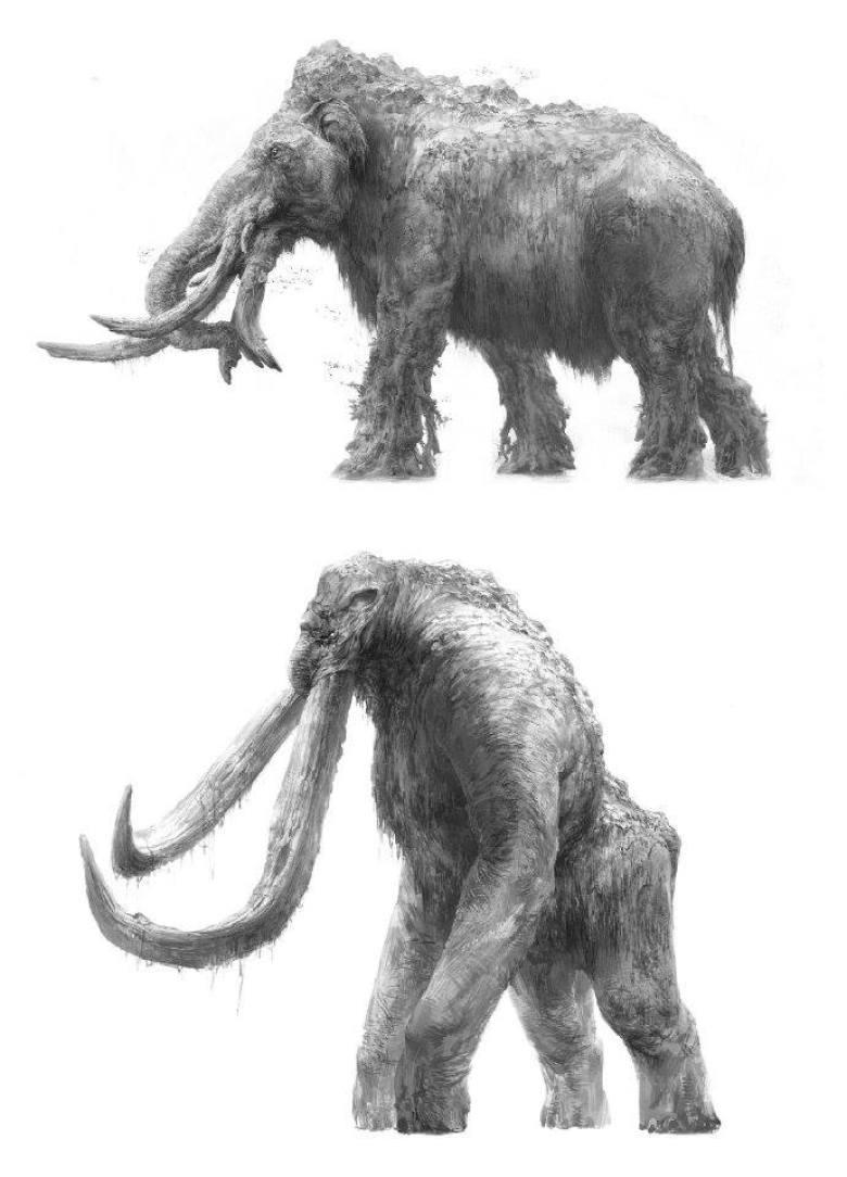 Accostamento mammuth e Behemoth