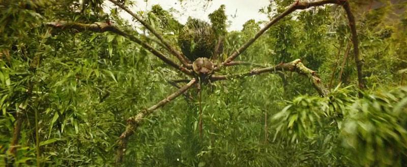Mother Longlegs film Skull Island