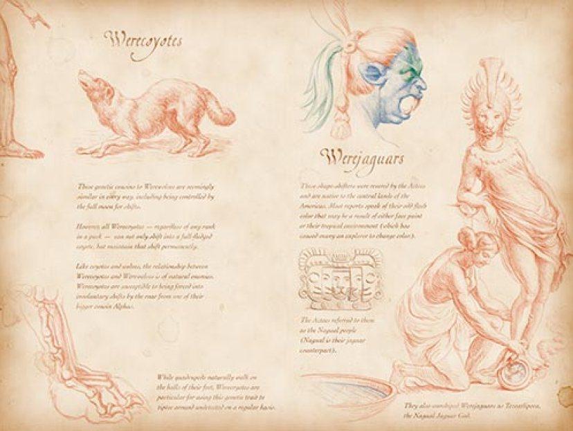 Bestiary_werecoyote_and_werejaguar_page.jpg