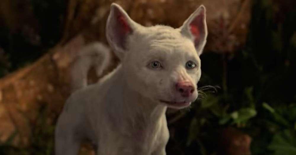 uncanny_wolf_mowgli_netflix.jpg