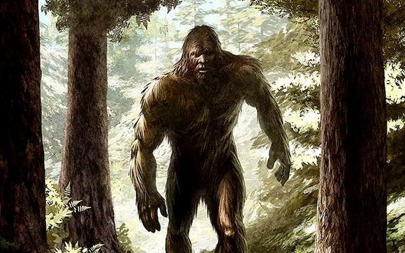 mostro_scheggia_bigfoot_umbria_monster_m
