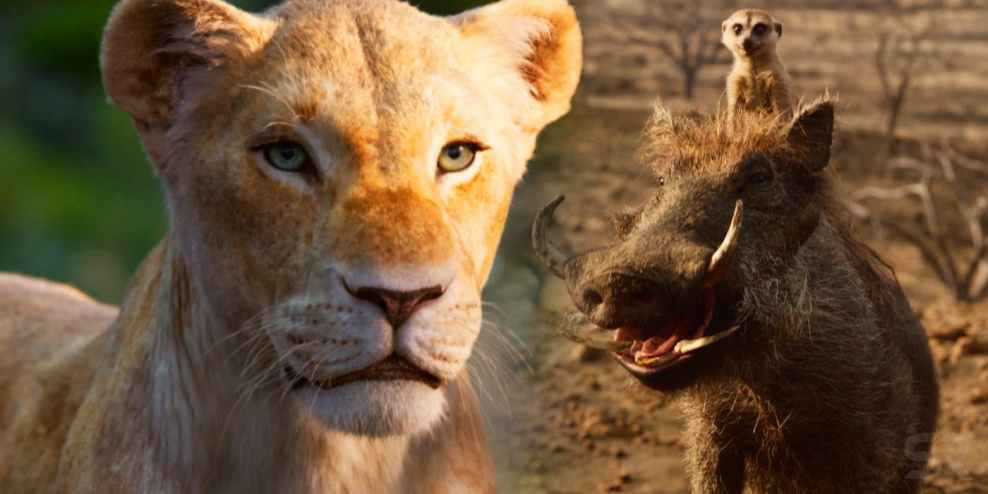 Nala-Timone-and-Pumbaa-in-The-Lion-King