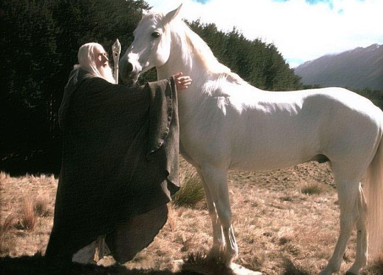 Ombromanto e Gandalf Signore degli Anelli