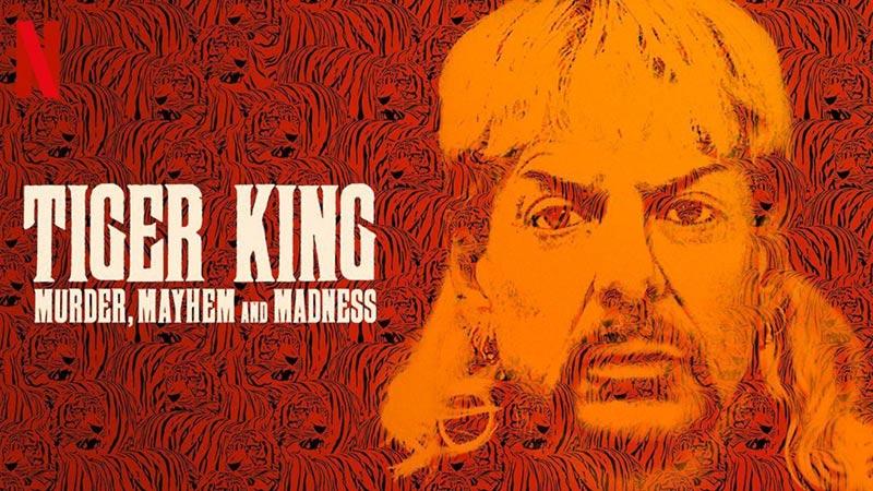 Tiger King recensione poster