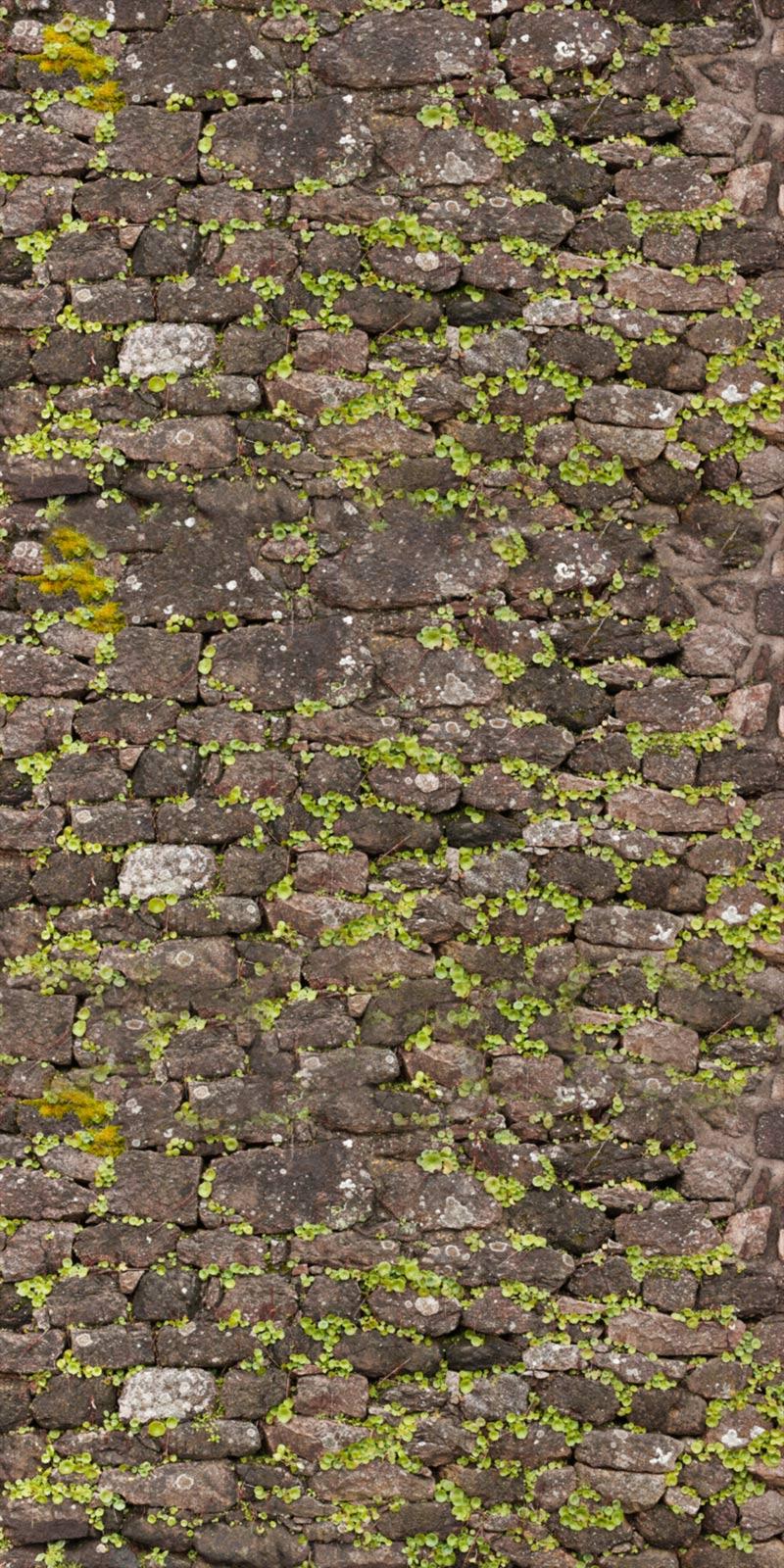 Muro di mattoni Texture