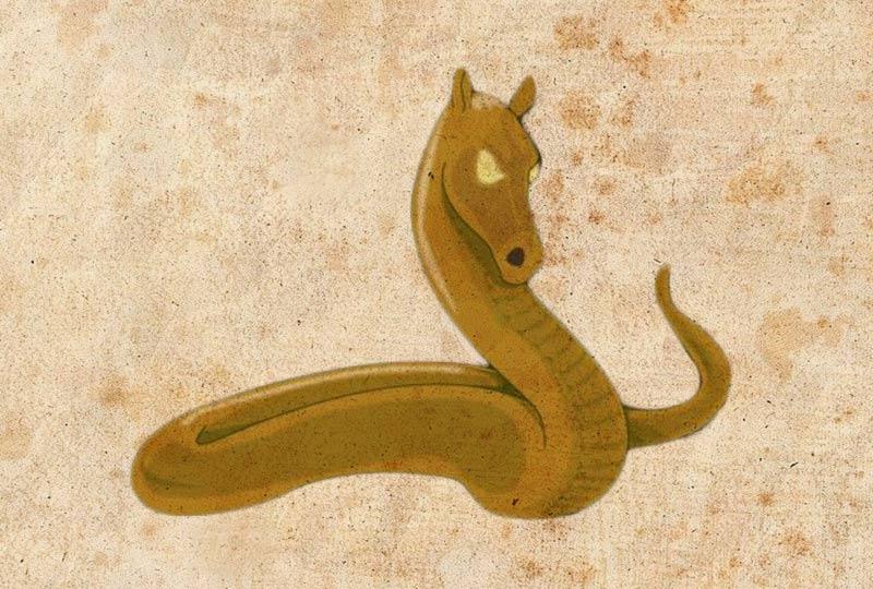 Mostro delle acque nere serpente Veneto