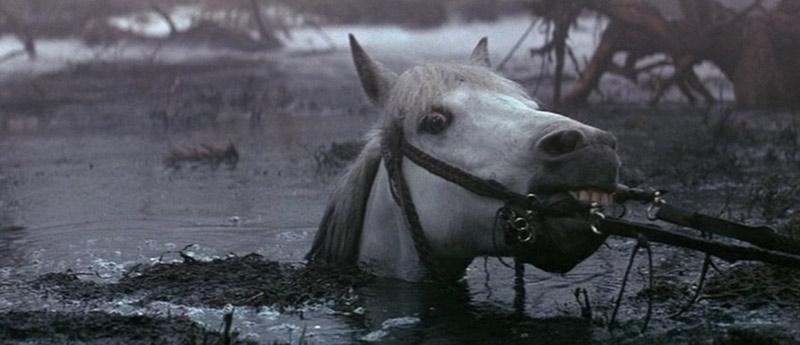 Artax cavallo di Atreyu La storia infinita