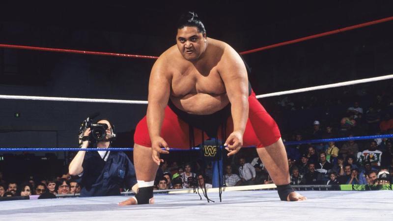 yokozuna wrestling lottatore