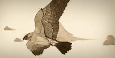 VB14-Luna-bird