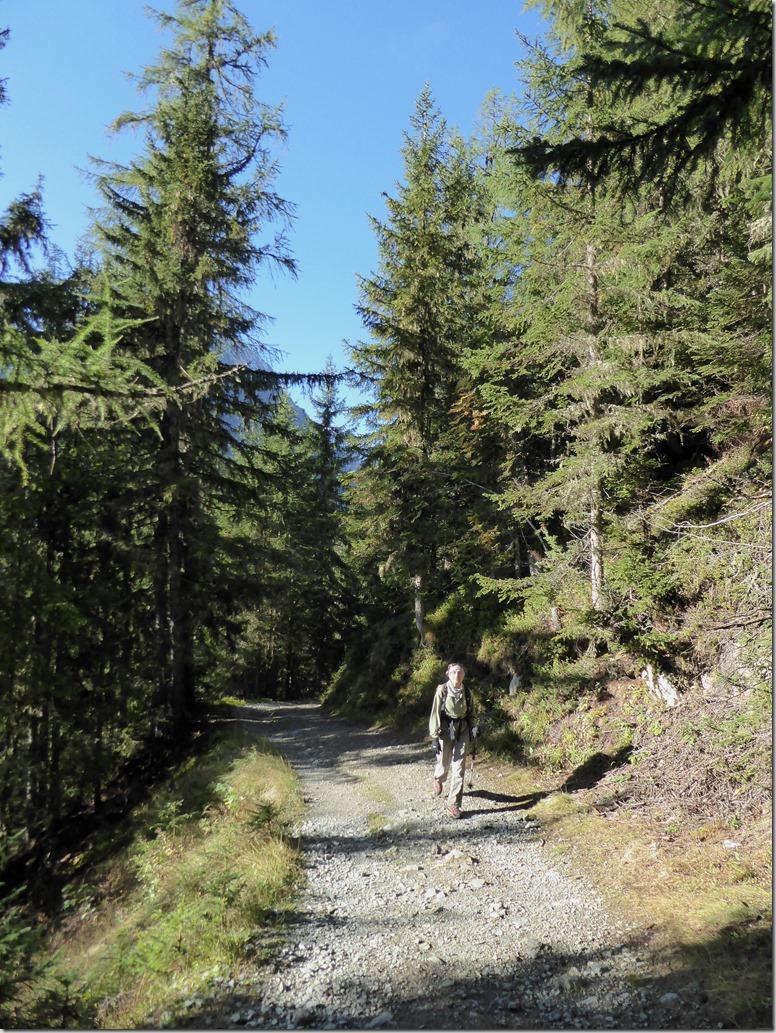 3 Montée forêt