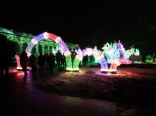 Wilanow lights