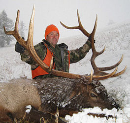 Montana Elk Hunting 6x6 Bull - 336 B&C