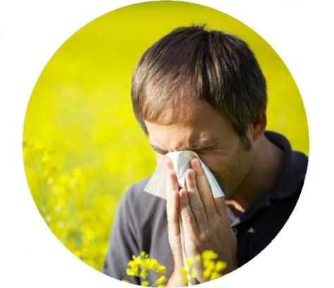 allergiesasthma