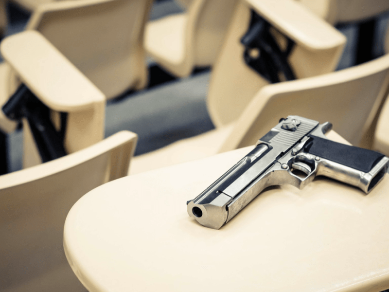 Montana constitutional carry guns on campus