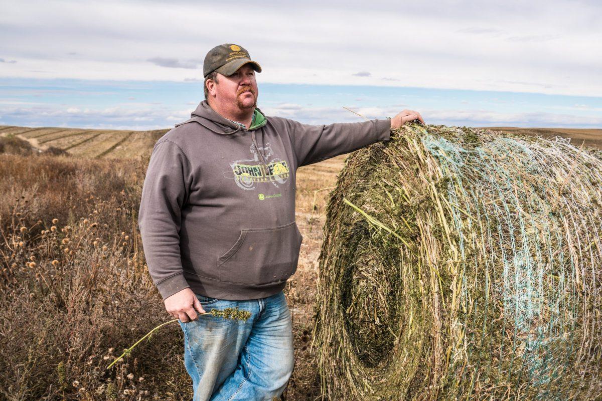 Beau Anderson hemp Montana