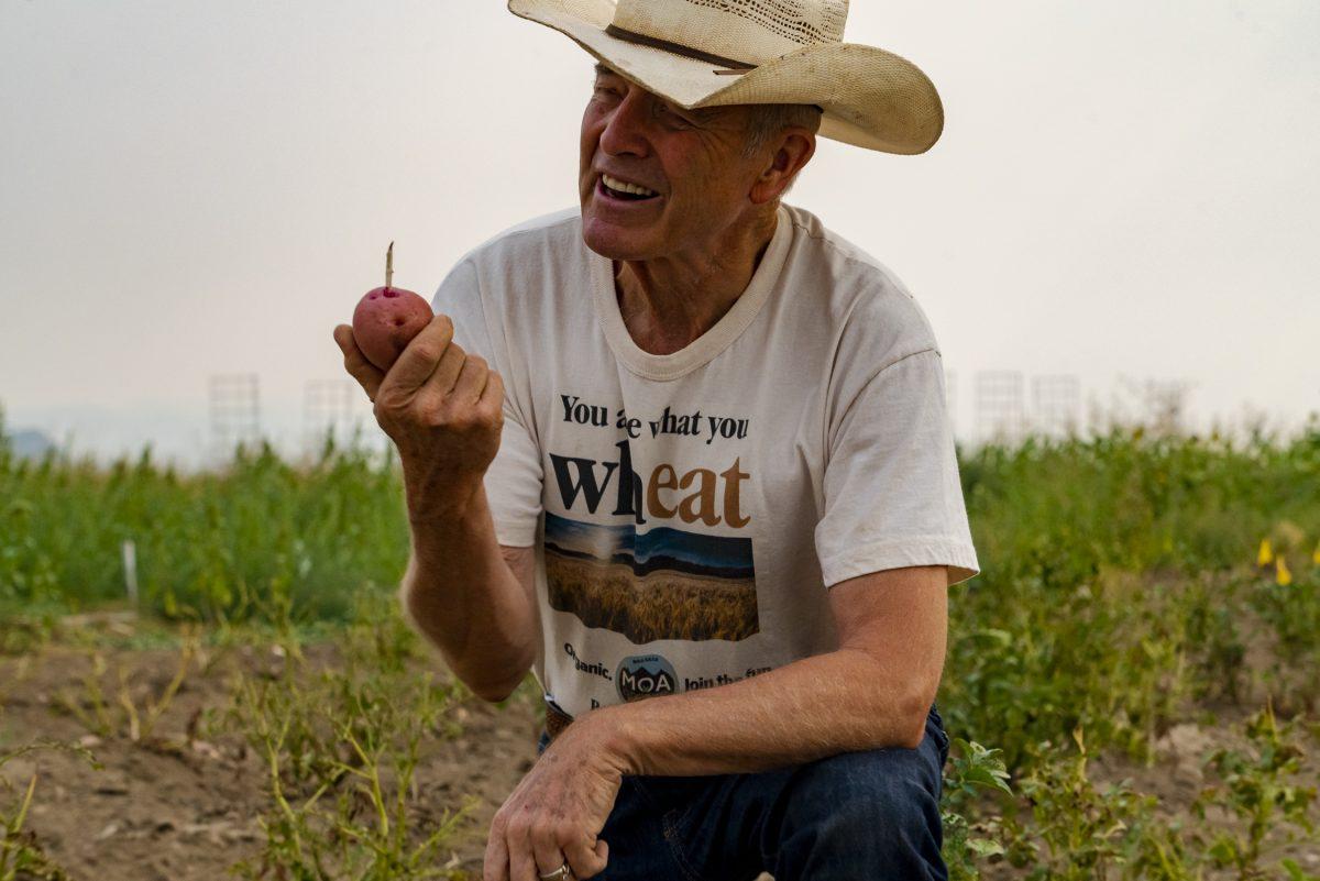 Bob Quinn farm Big Sandy Montana