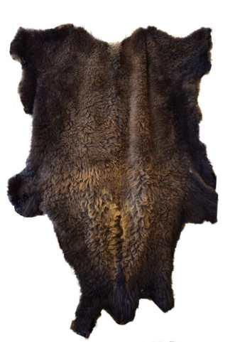 Buffalo robe, bison hide