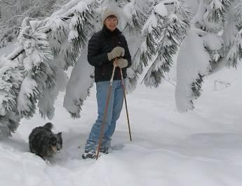 Winter Walking Snowshoeing
