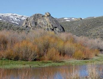 Duck Valley Reservation