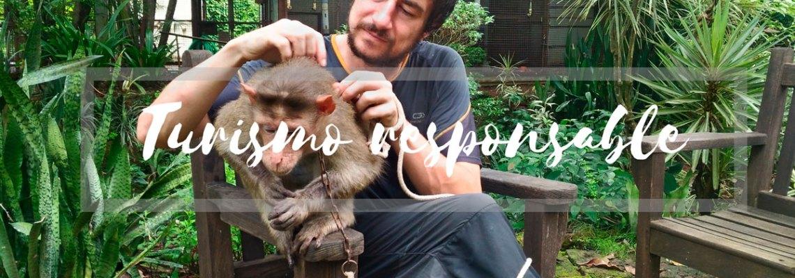 Experiencia de turismo responsable: cuidando primates en India