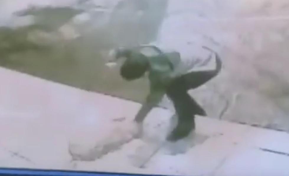 Rapaz que esfaqueou cão em posto de gasolina deve se apresentar a polícia